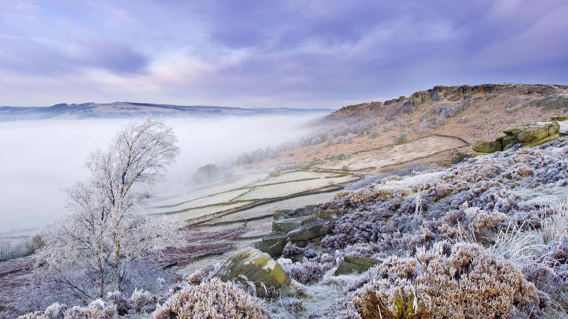 Ảnh nền thiên nhiên mùa đông đẹp