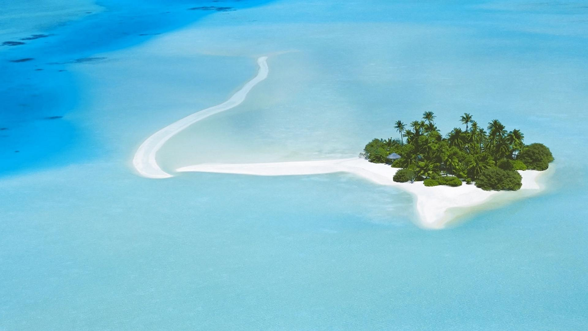 Hình nền bãi biển từ Bing