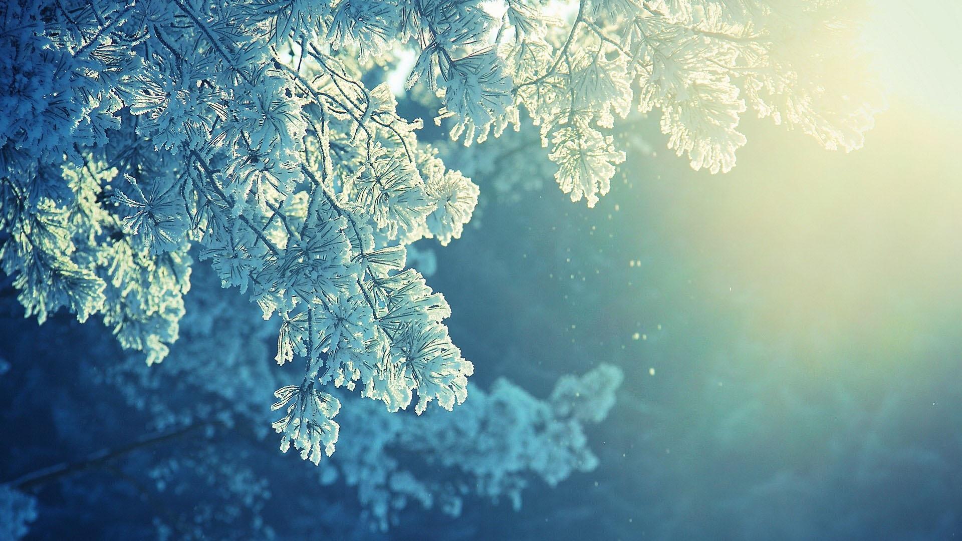 Ảnh nền full hd mùa đông