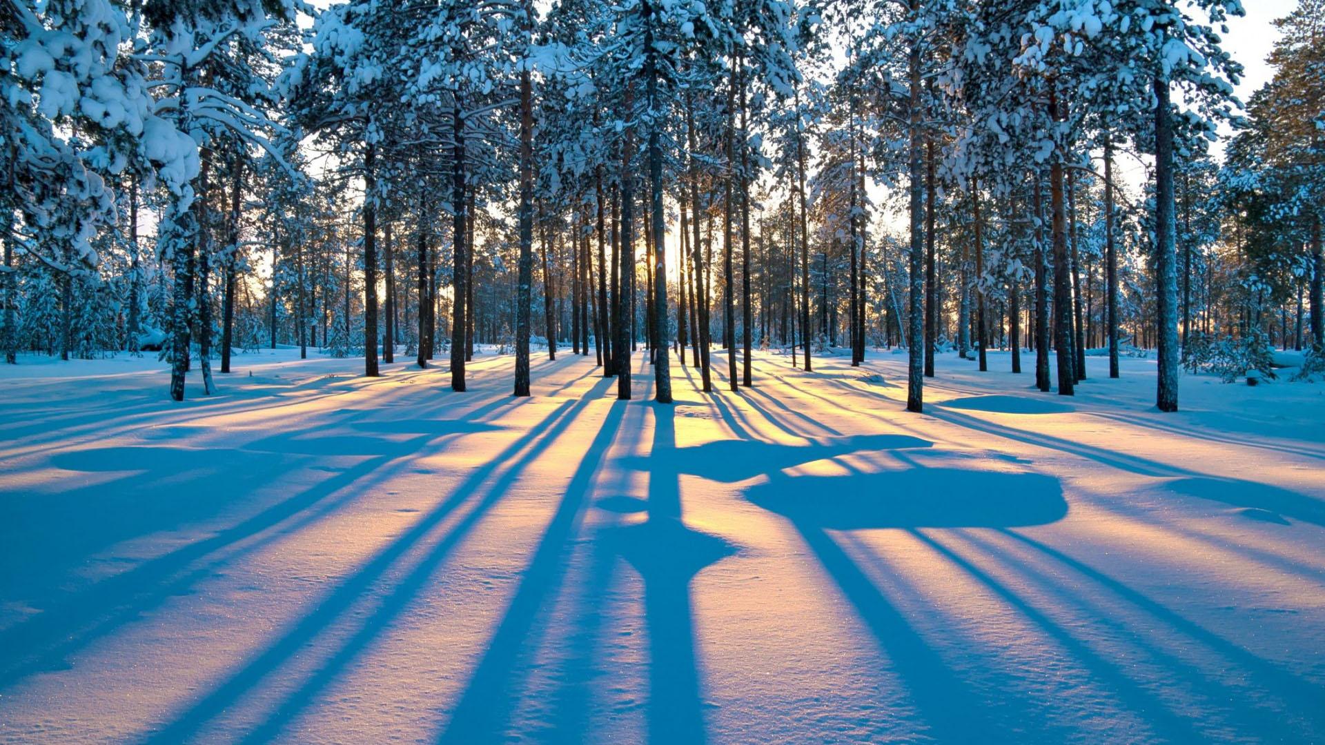 Ảnh nền mùa đông đẹp