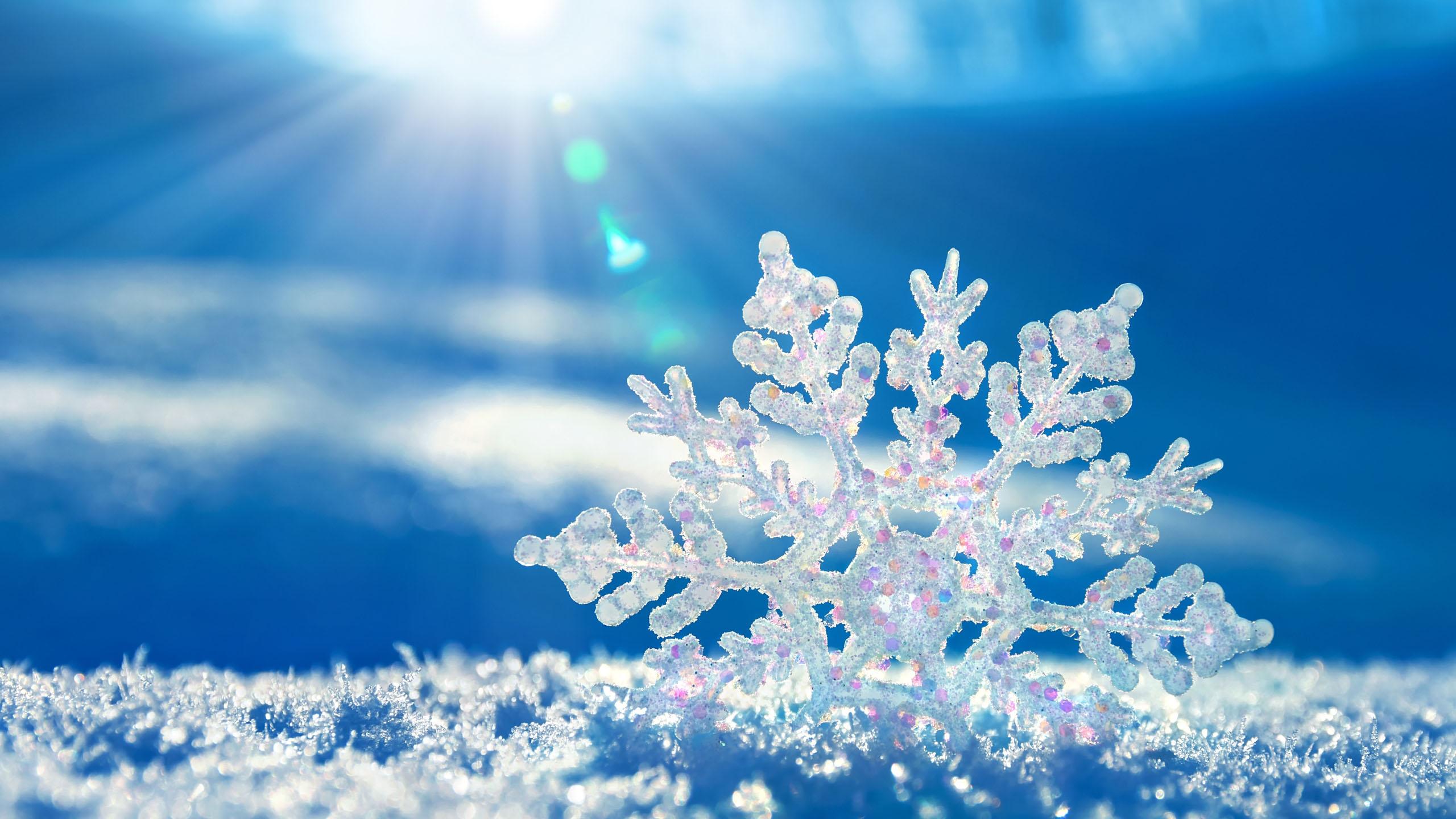 Hình nền chủ đề mùa đông