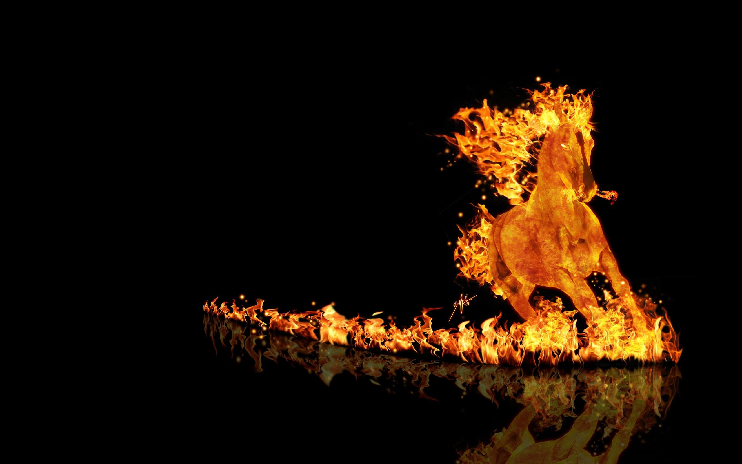 Hình nền đại bàng lửa