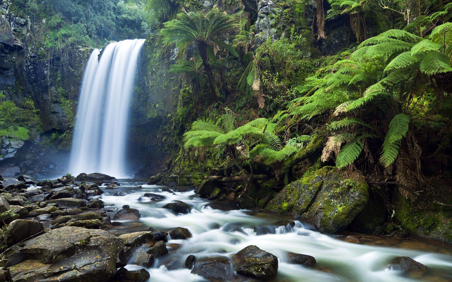 Hình nền dòng thác nước chảy