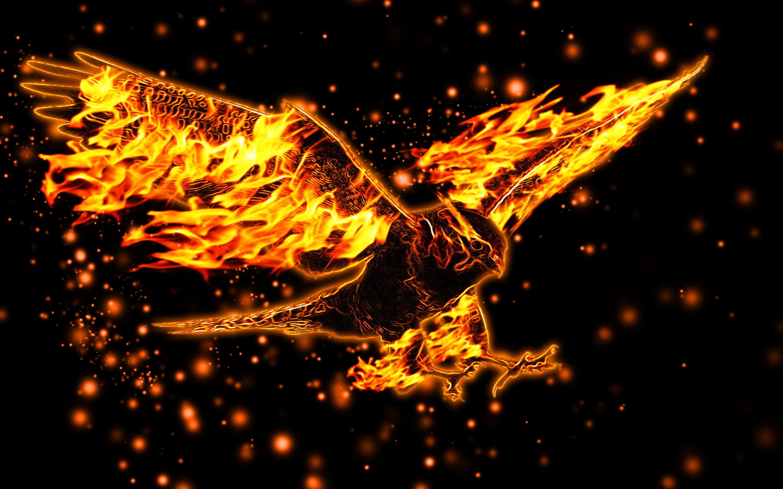 Hình nền lửa rừng đẹp nhất