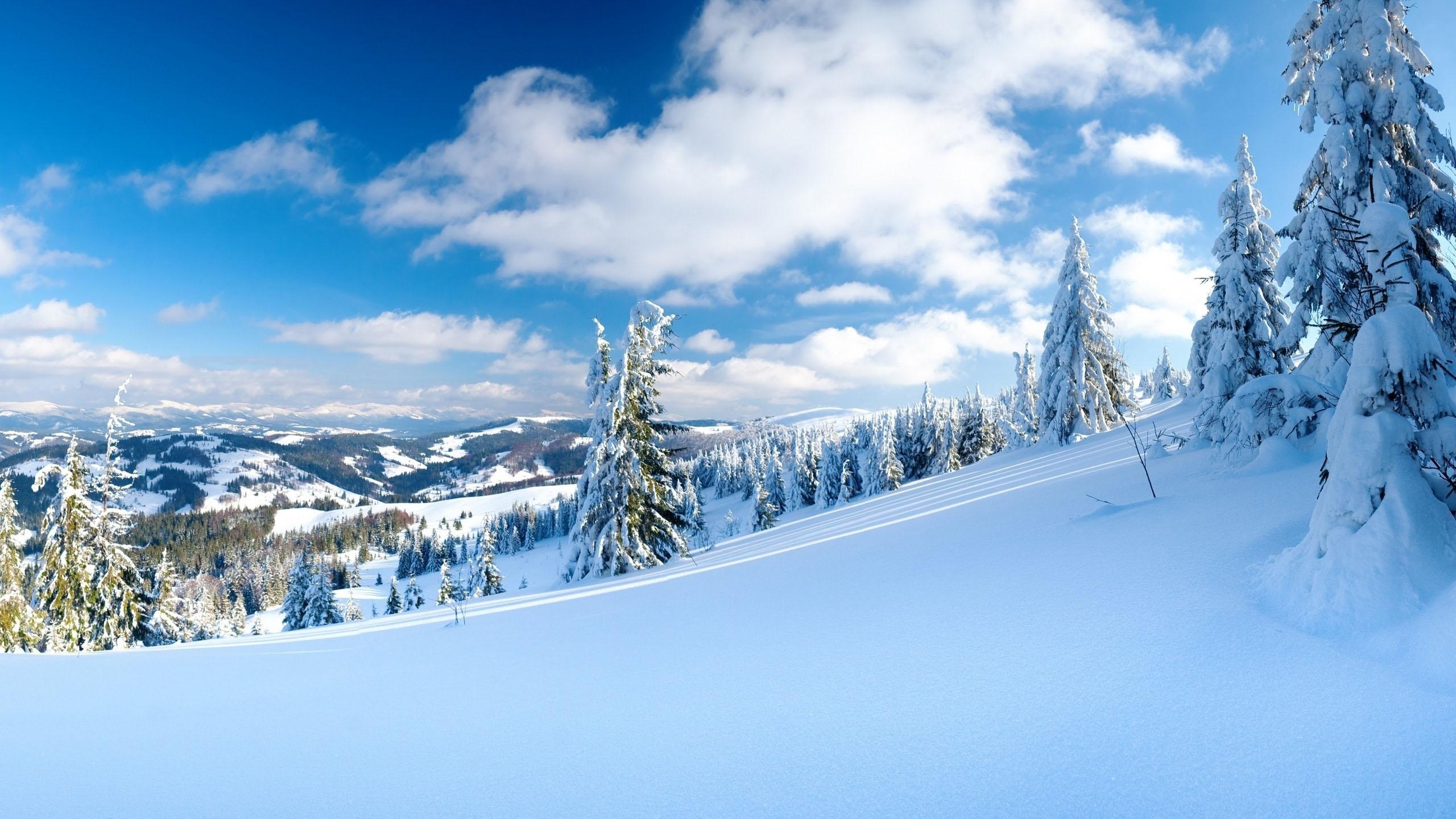 Hình nền mùa đông 2k