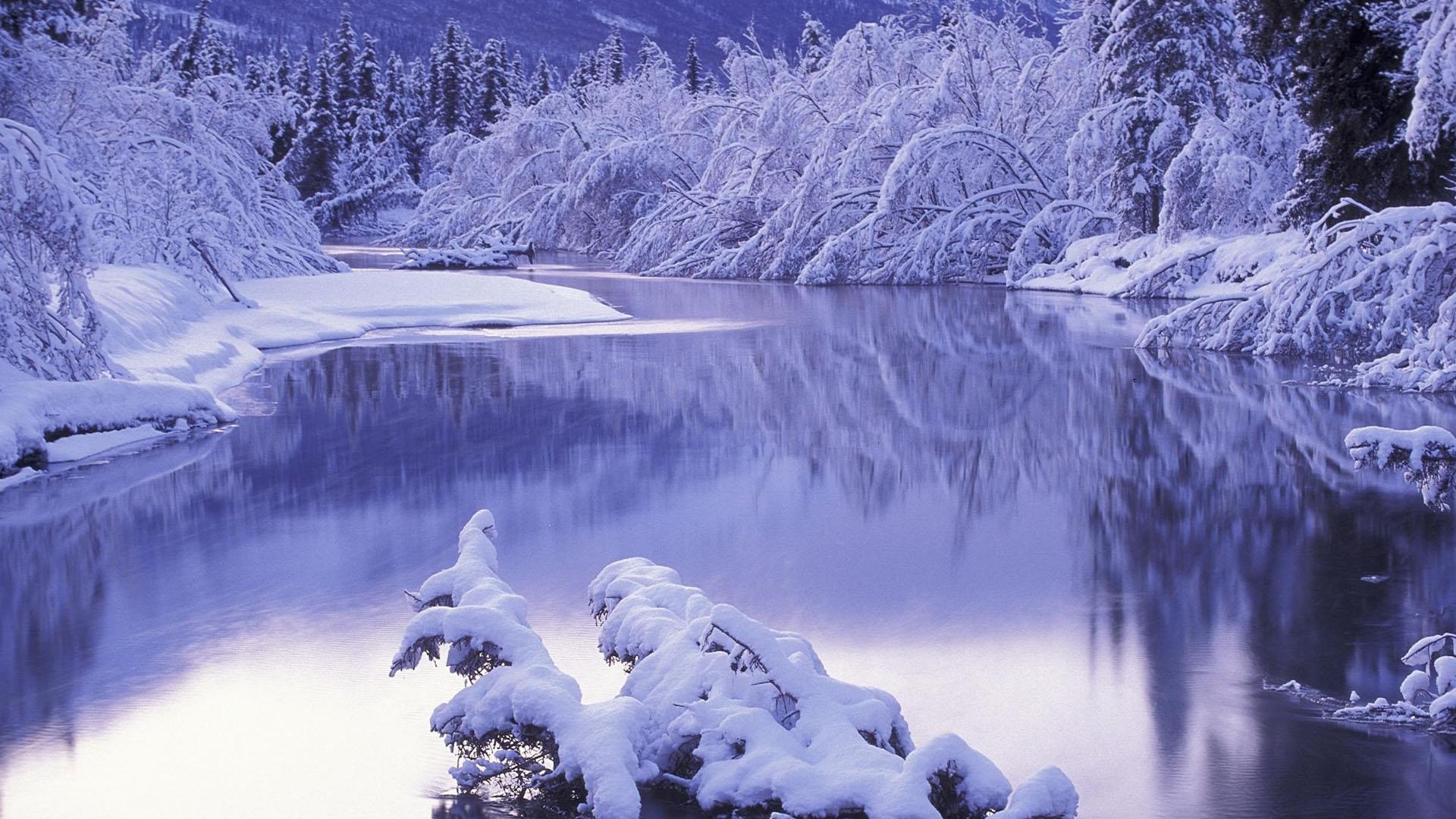 Hình nền mùa đông băng giá đẹp nhất