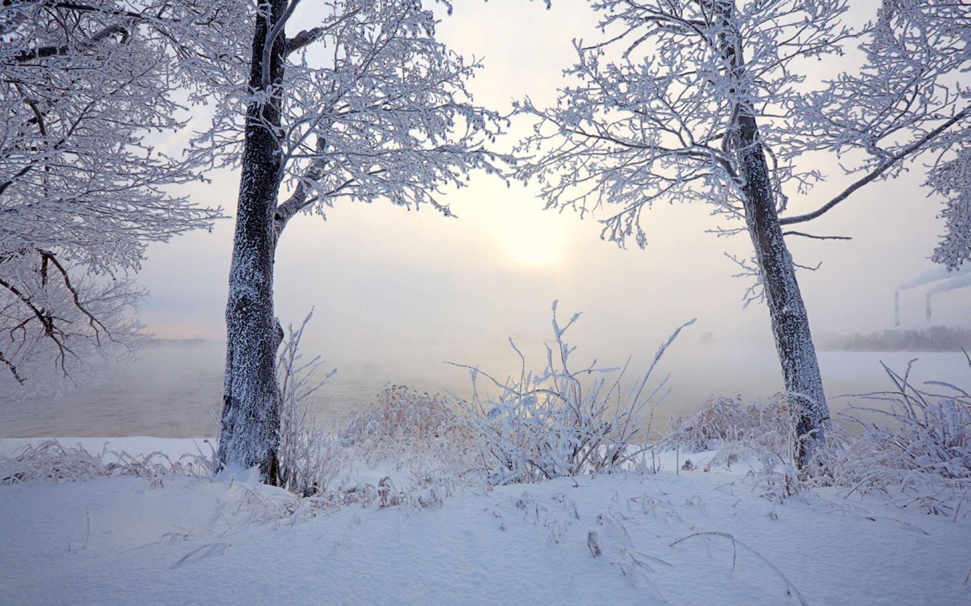 Hình nền mùa đông băng giá đẹp