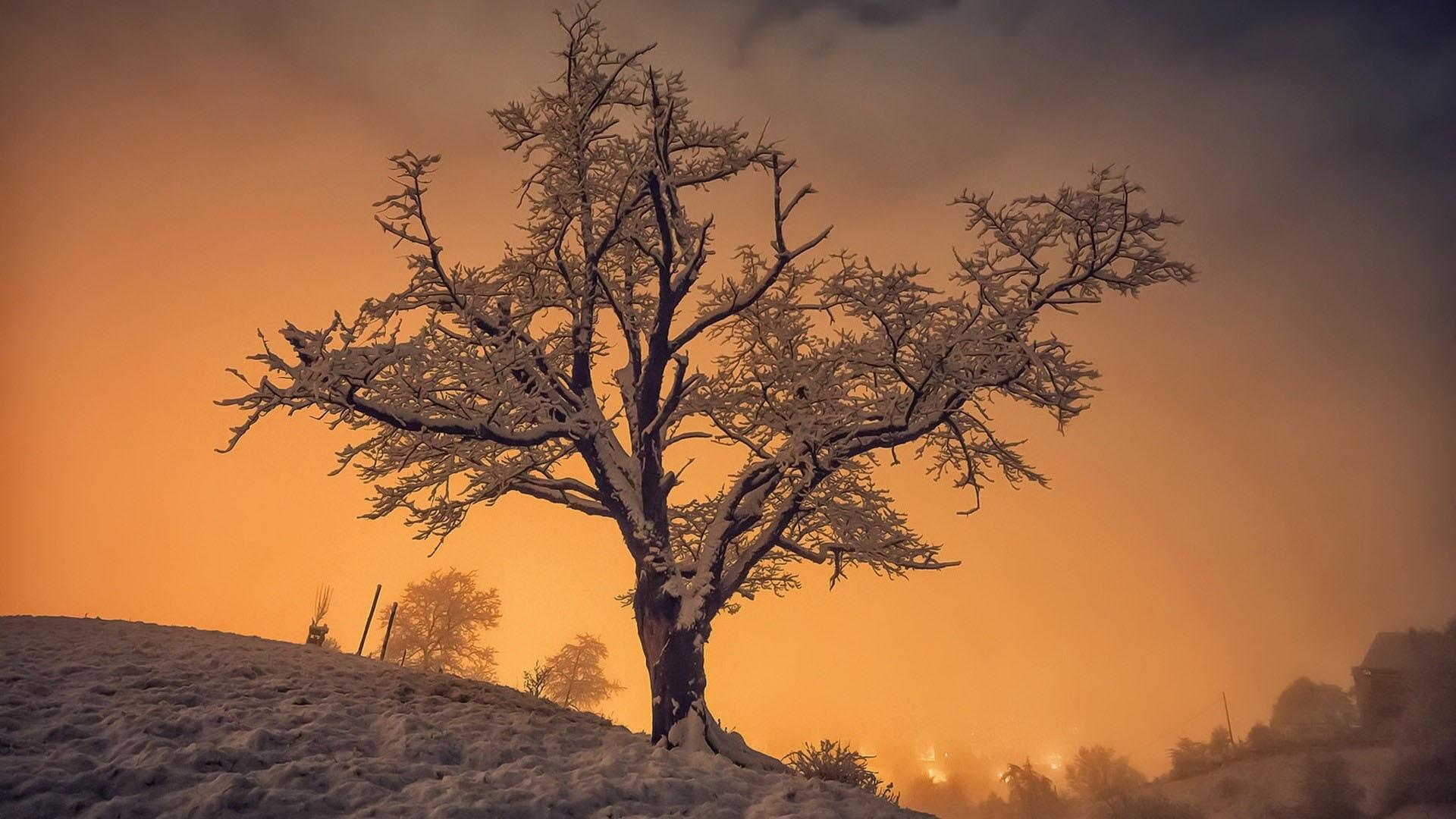 Hình nền mùa đông chiều tà