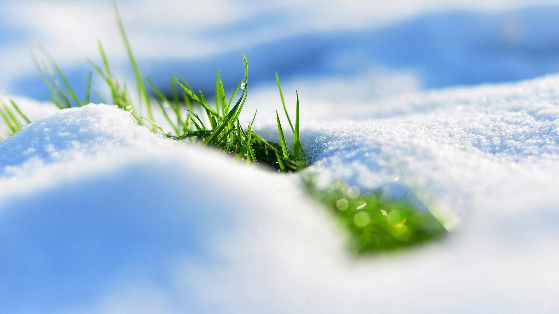 Hình nền mùa đông đẹp chất lượng full hd