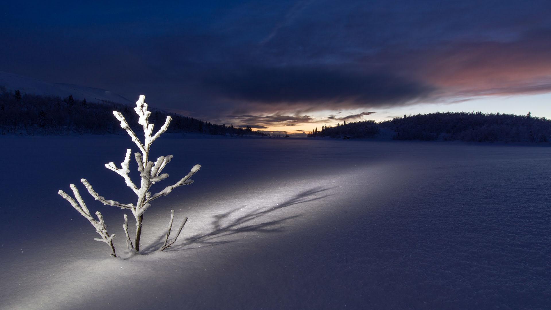 Hình nền mùa đông đẹp nhất cho pc