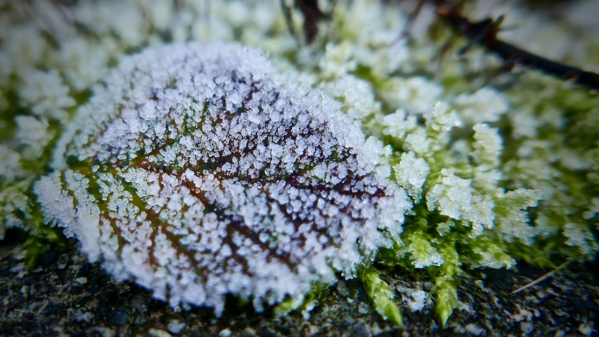 Hình nền mùa đông đẹp và độc đáo