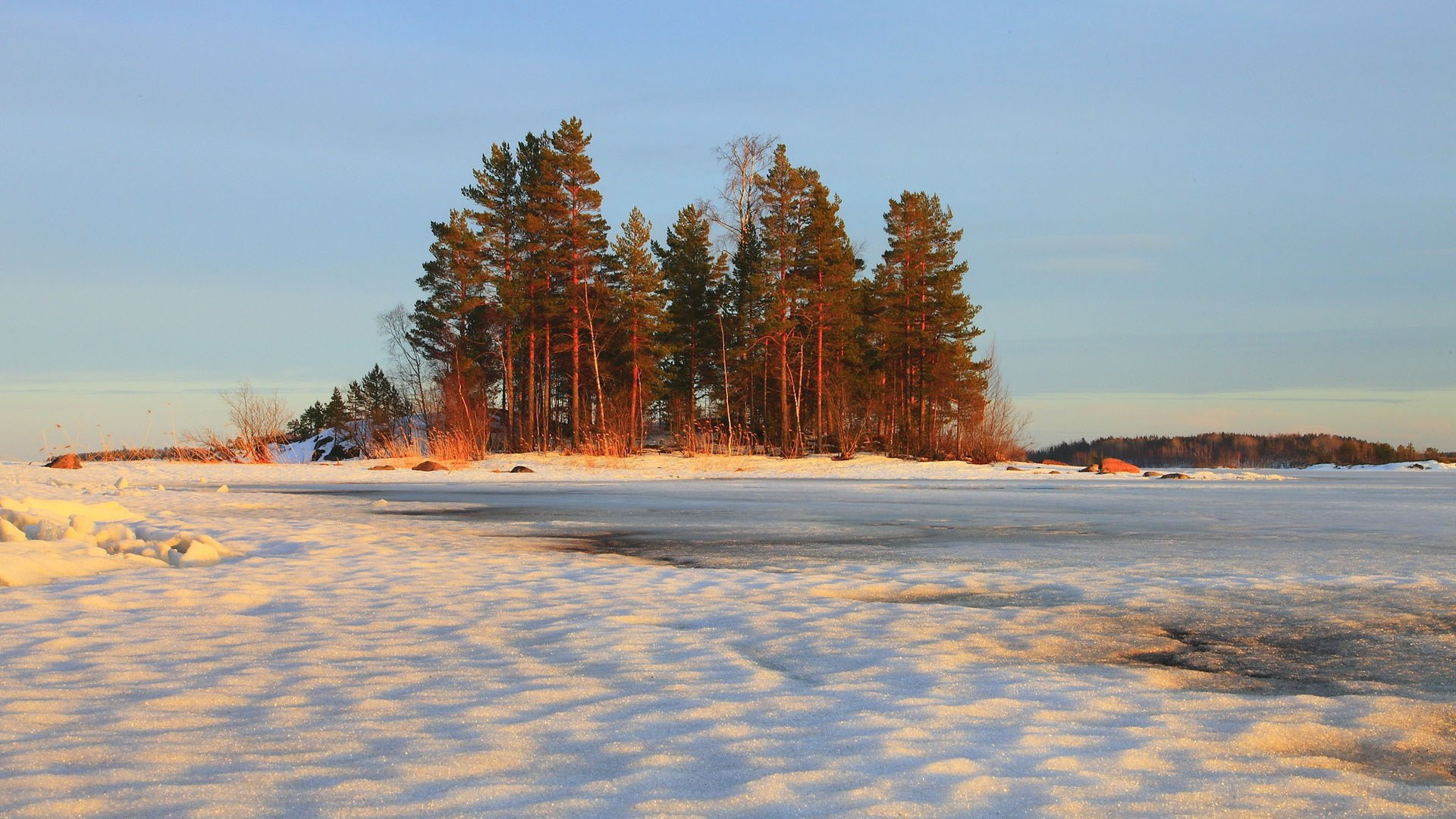 Hình nền mùa đông độc đáo nhất