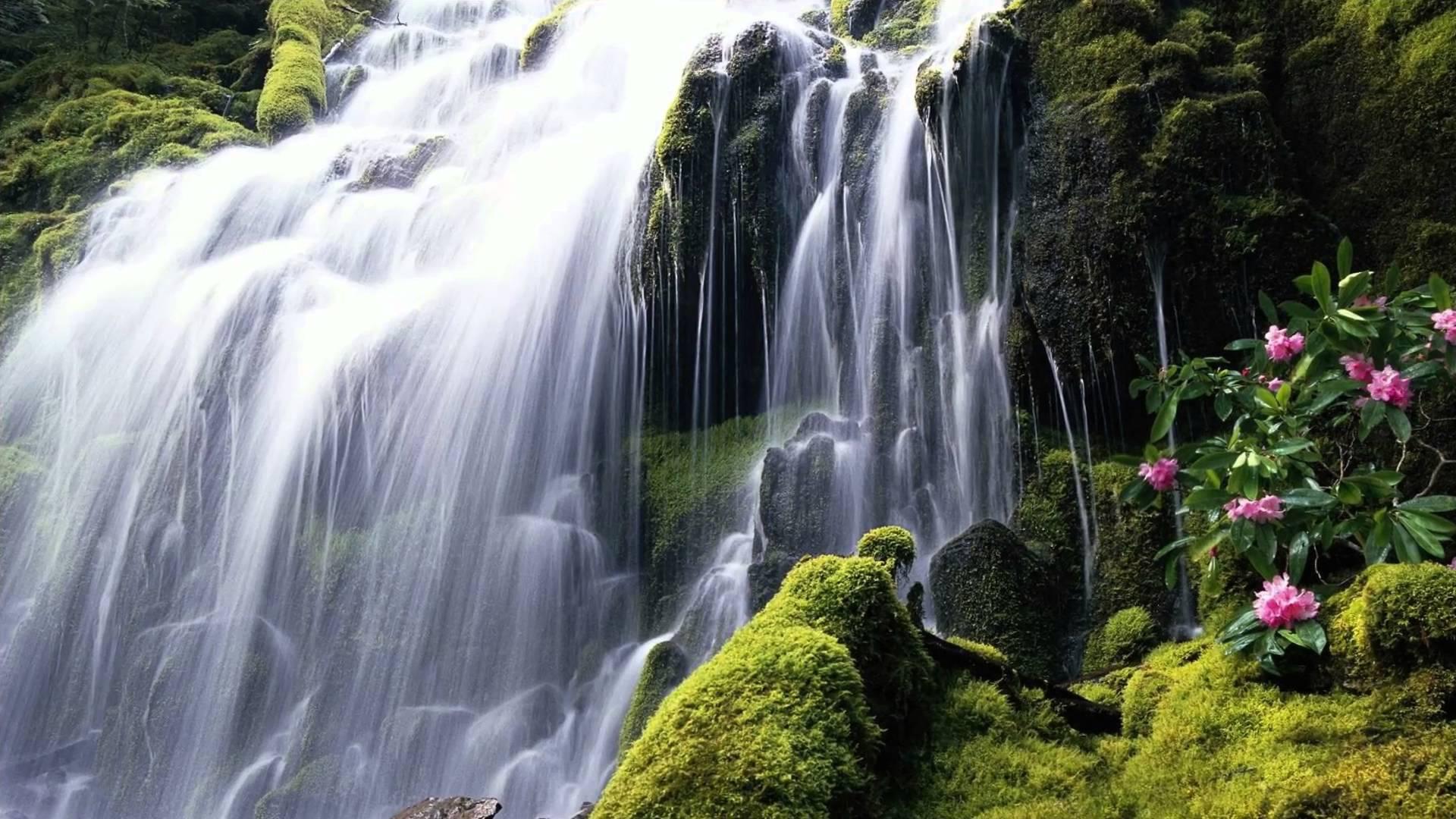 Hình nền phong cảnh thác nước hùng vĩ