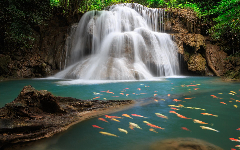 Hình nền thác nước đẹp nhất cho máy tính