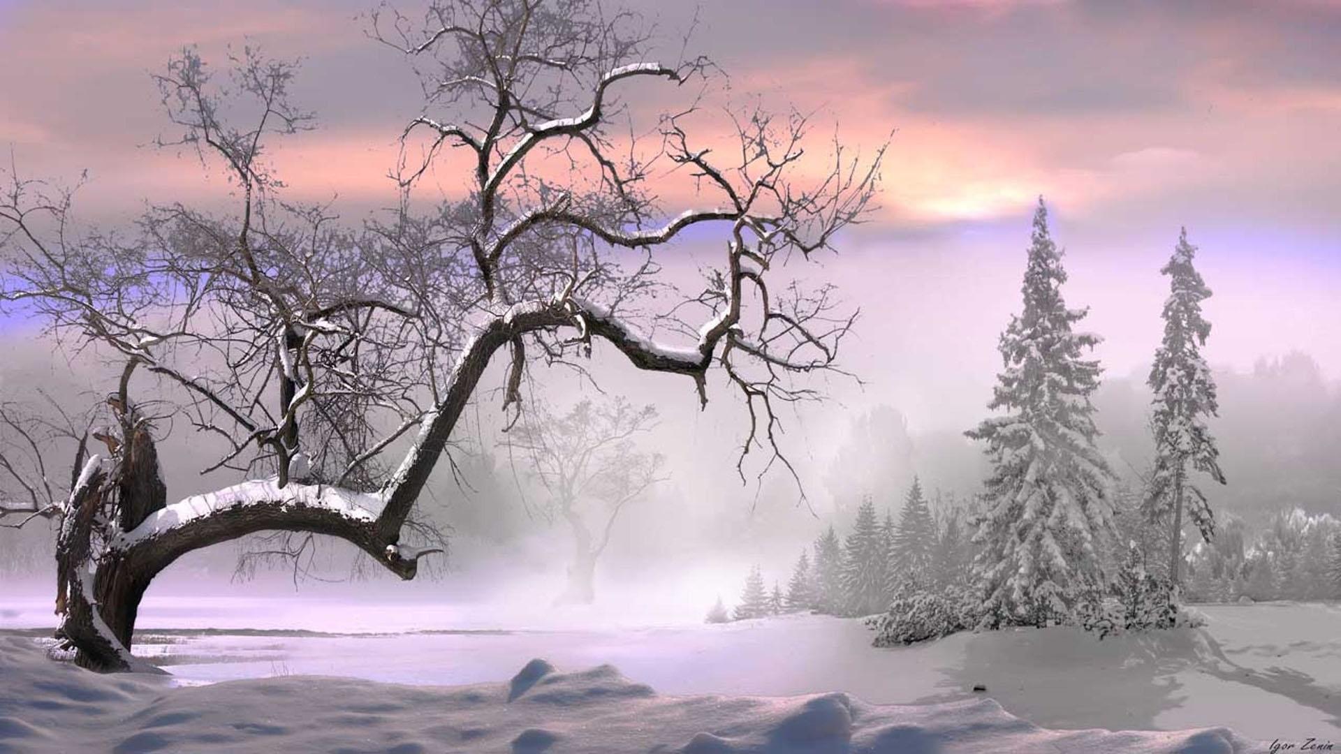 Những hình nền mùa đông đẹp cho máy tính