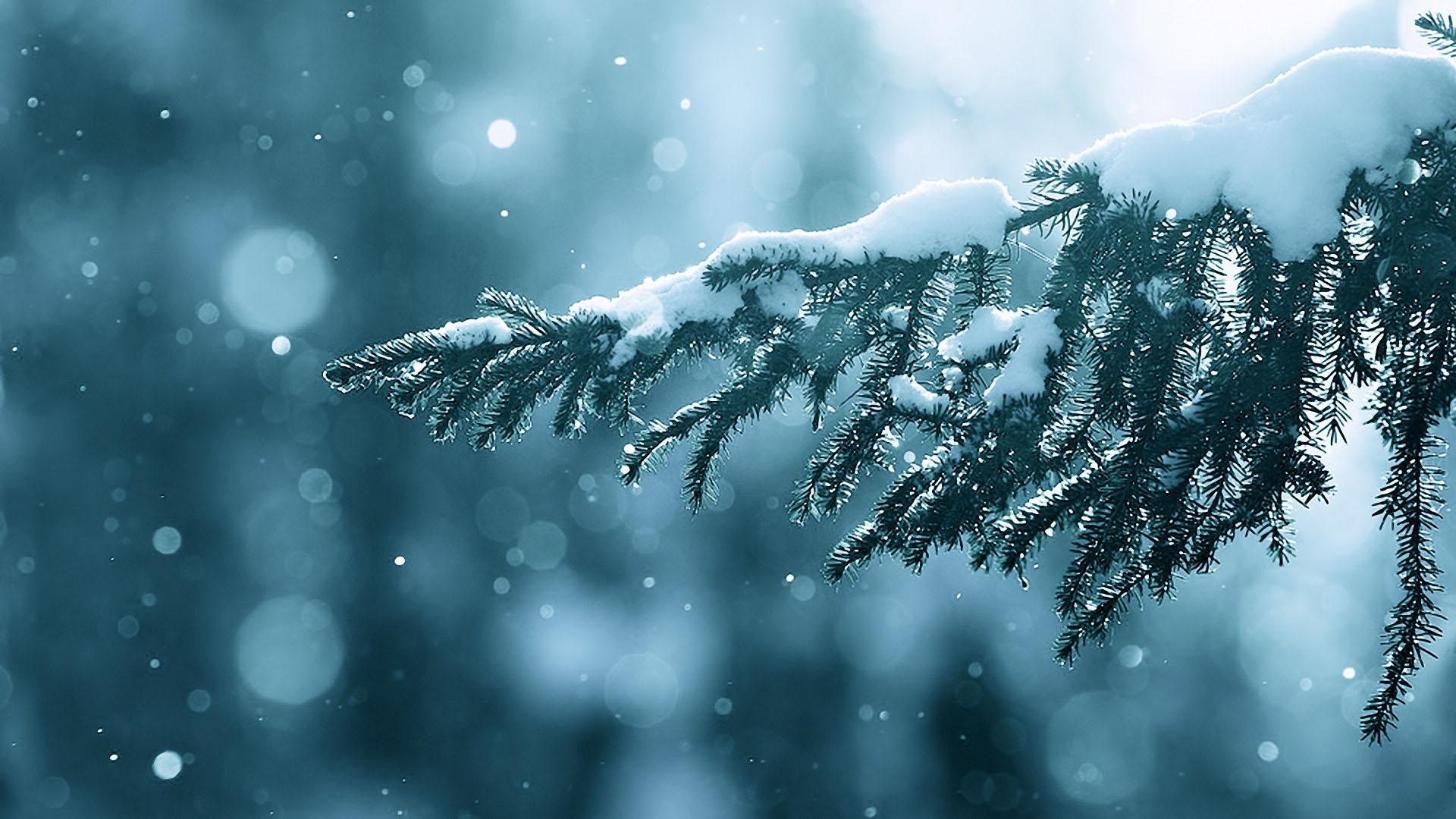 Những hình nền mùa đông đẹp nhất