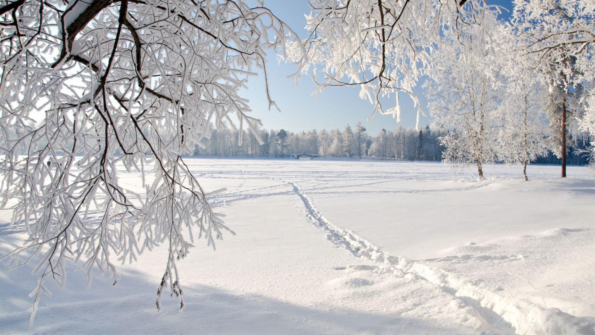 Tổng hợp hình nền mùa đông