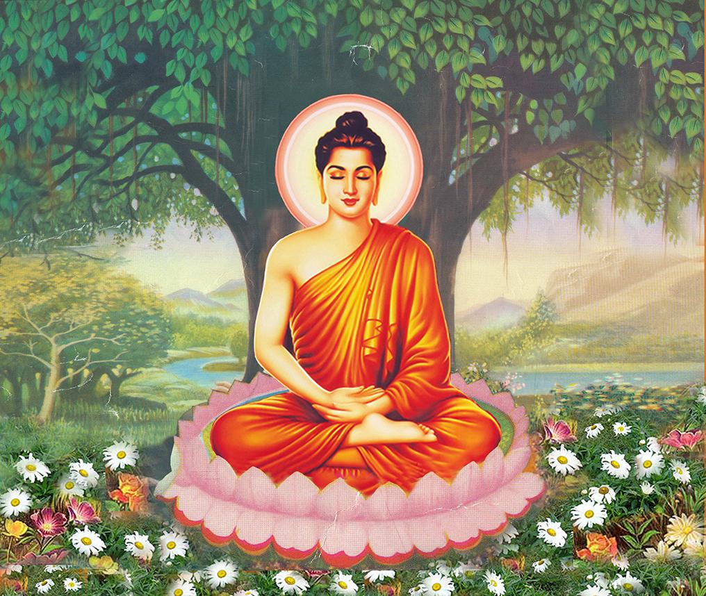 Ảnh Đức Phật Thích Ca Mâu Ni đẹp