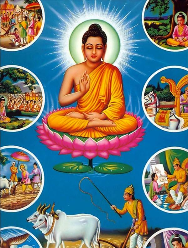 Hình ảnh về cuộc sống của Phật Thích Ca Mâu Ni