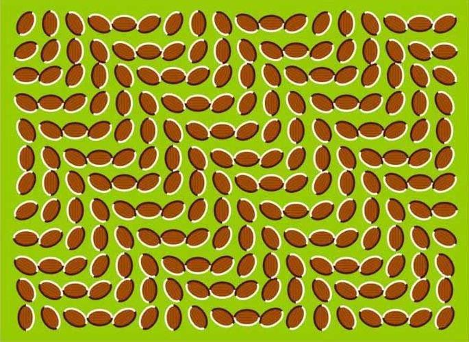 Những loạt ảnh gây ảo giác chuyển động 5
