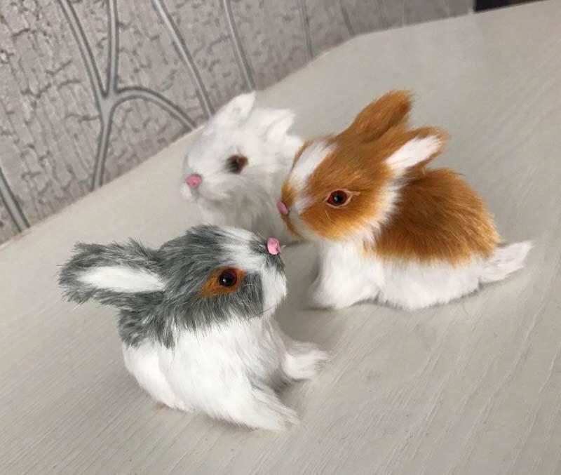 Hình con thỏ đẹp nhất