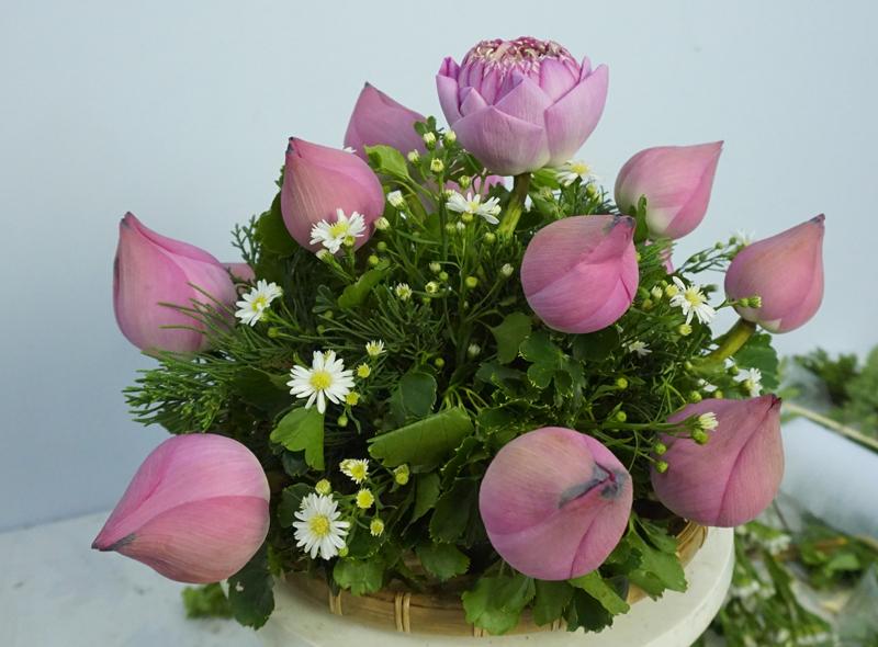 Mẫu hoa sen để bàn đẹp nhất