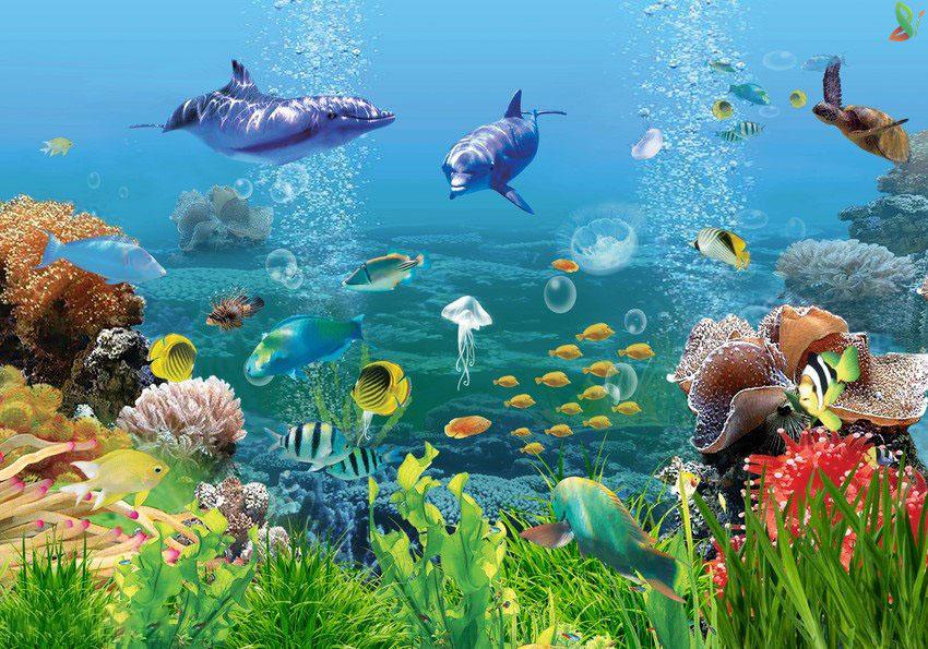 Hình ảnh 3d dưới biển