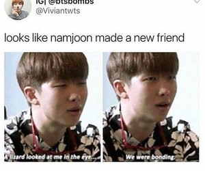 Ảnh chế BTS hài bựa- Looks like Namjoon made a new friend