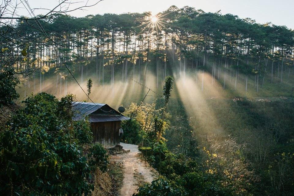 Ảnh đẹp Đà lạt nắng sớm