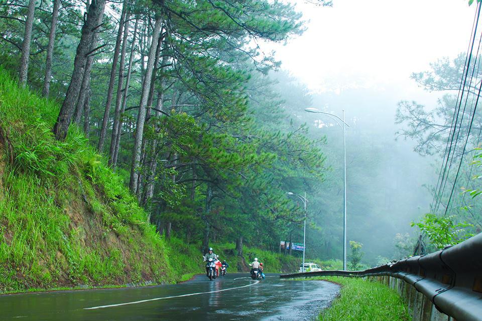 Hình ảnh Đà lạt vào mùa mưa