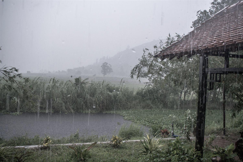 Hình ảnh mưa bình yên đẹp