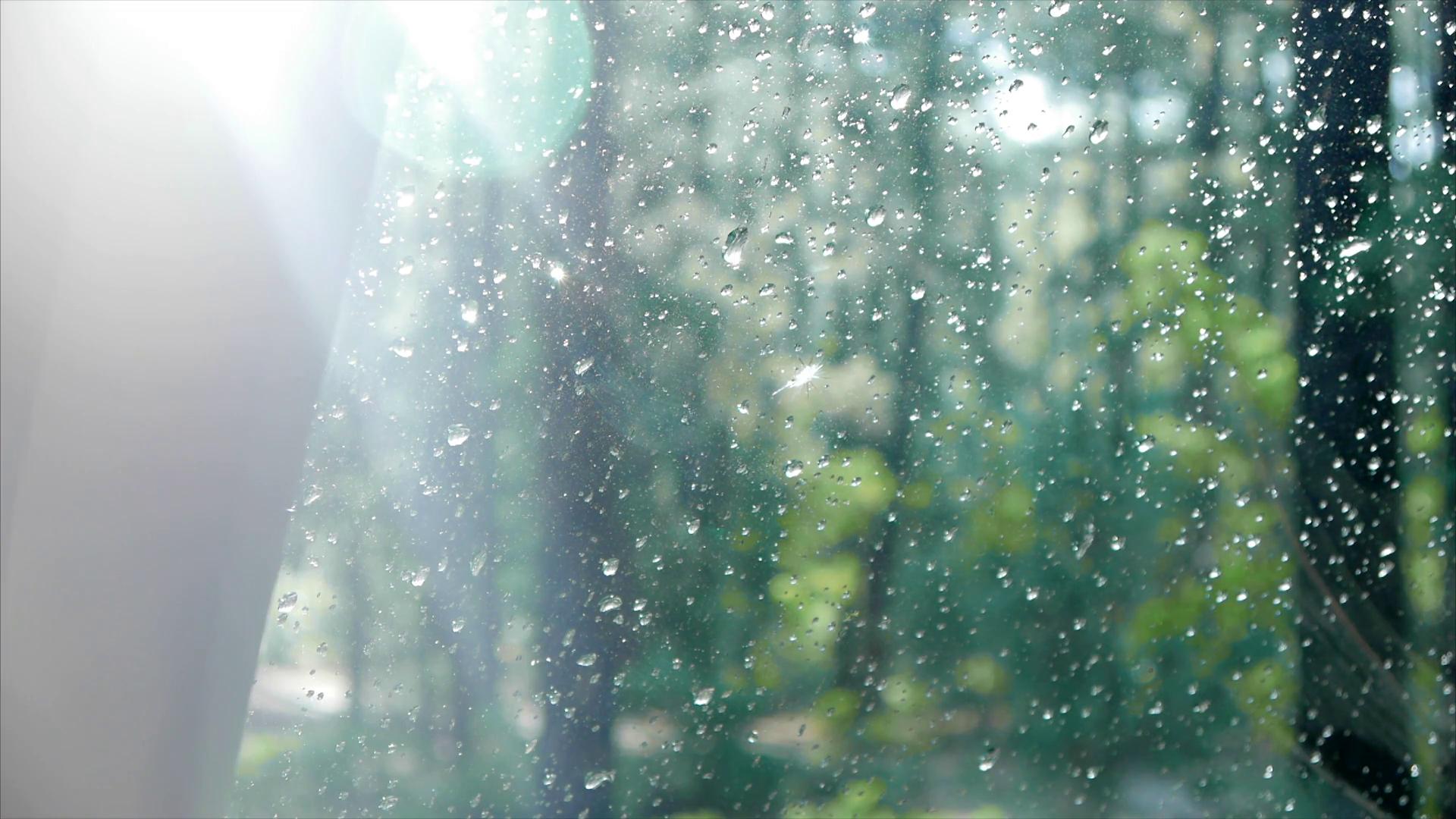 Hình ảnh mưa đẹp nhất