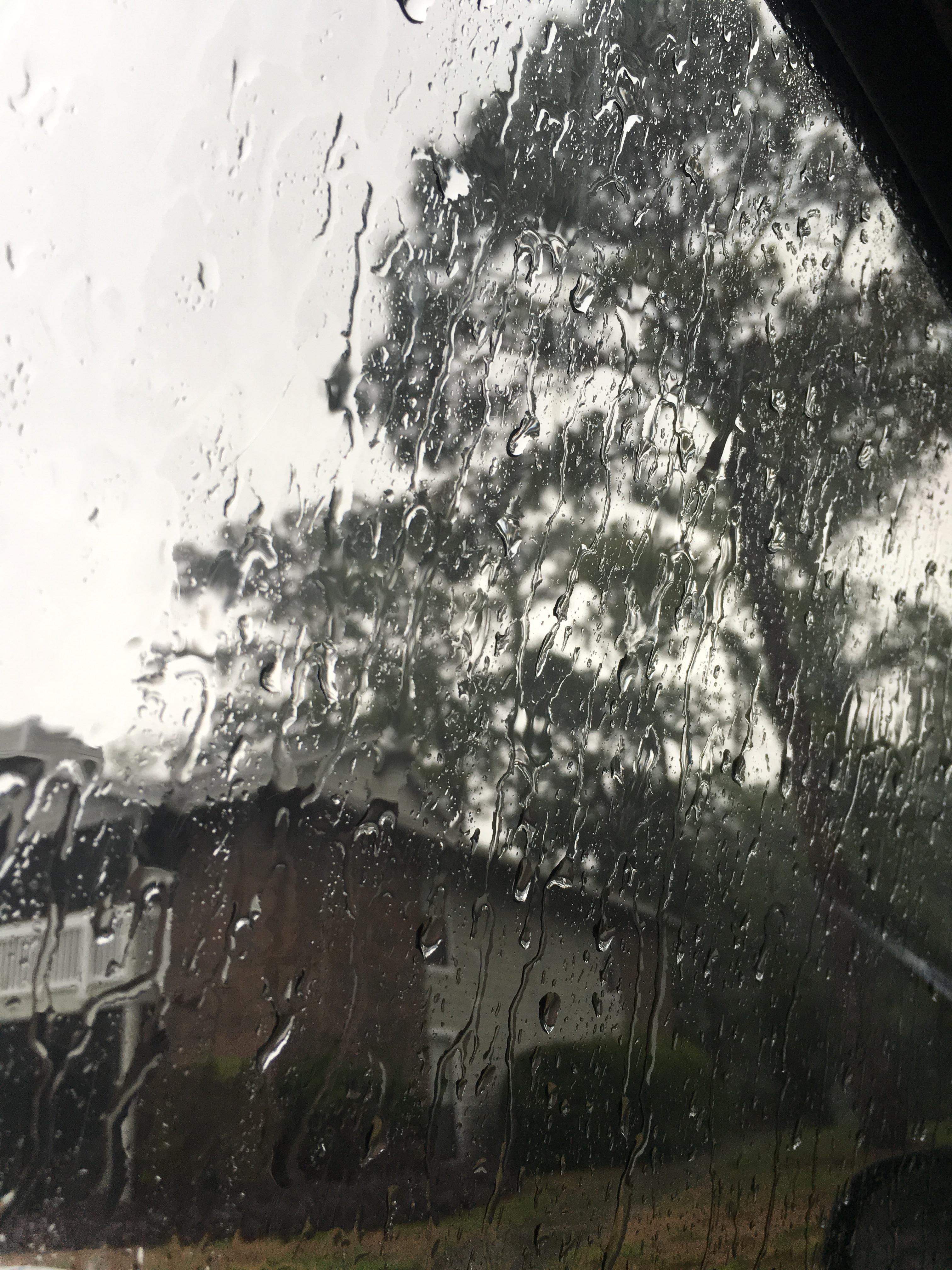 Hình ảnh trời mưa đẹp qua ô cửa kính