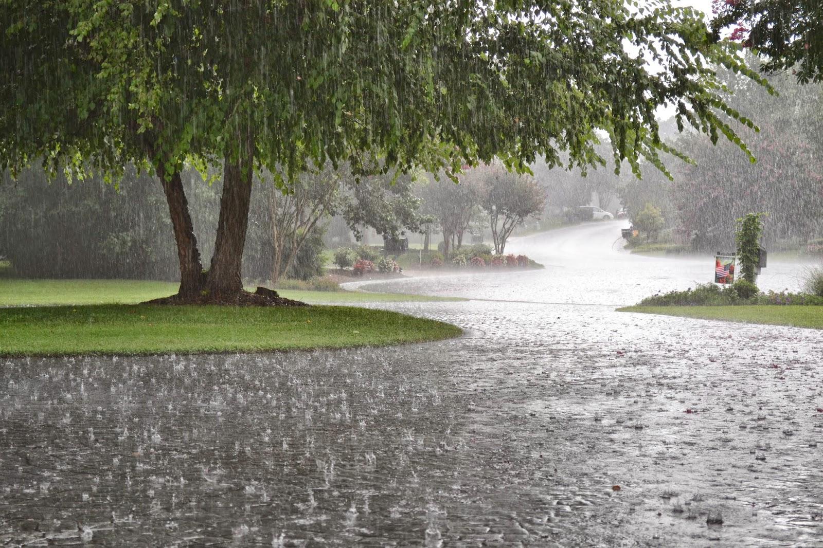 Hình ảnh trời mưa lãng mạn nhất