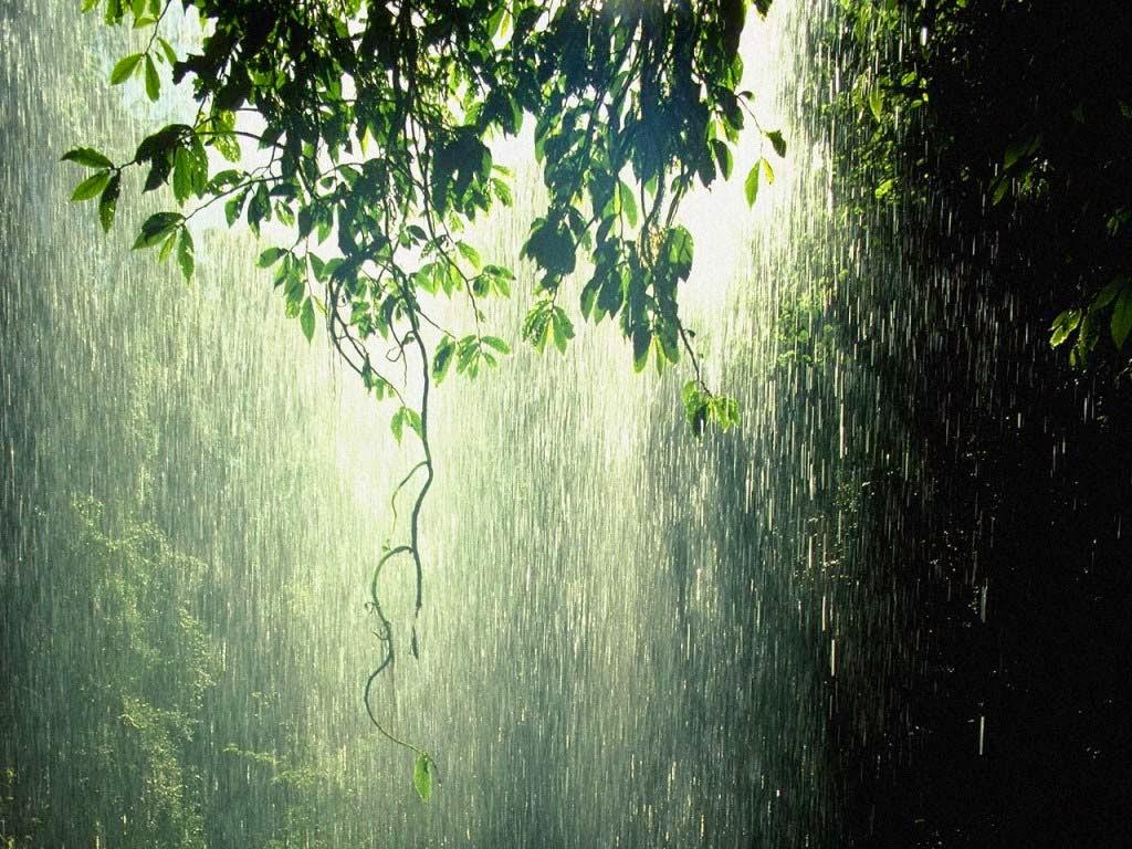 Hình ảnh trời mưa nắng cực đẹp
