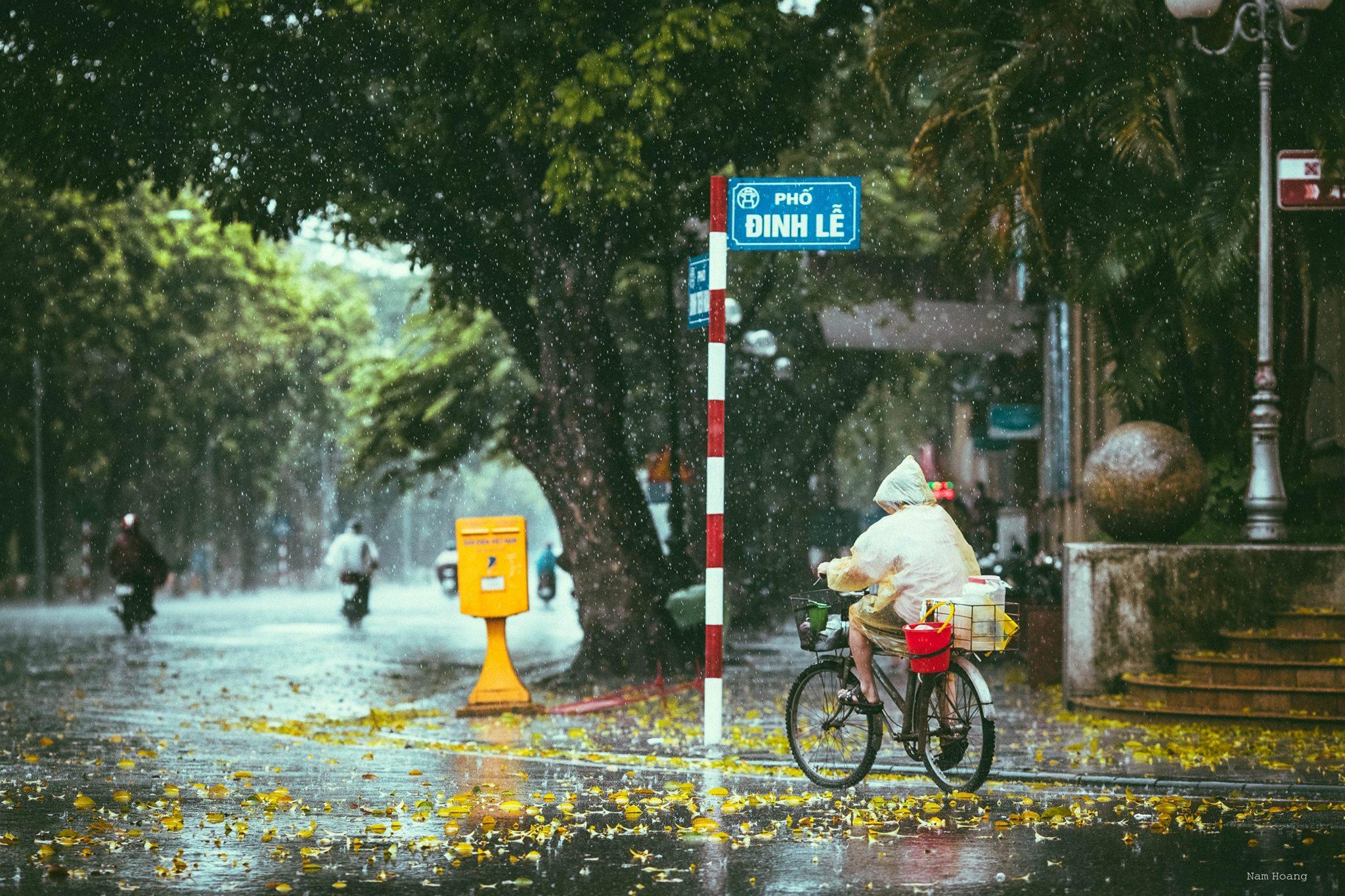 Hình ảnh trời mưa trên phố đẹp