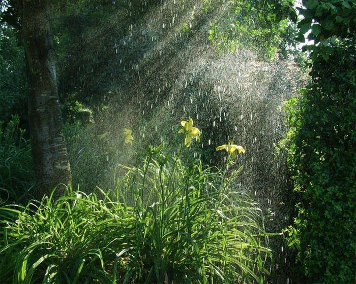 Hình ảnh trời vừa mưa vừa nắng đẹp nhất