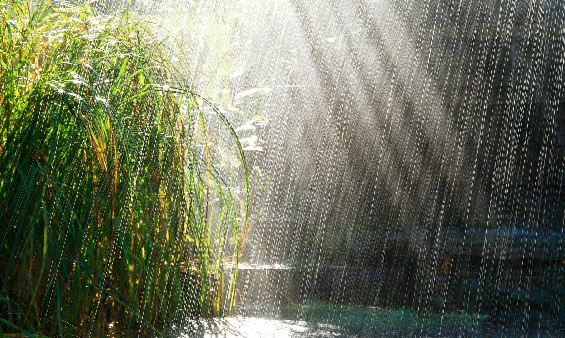 Những hình ảnh về trời mưa