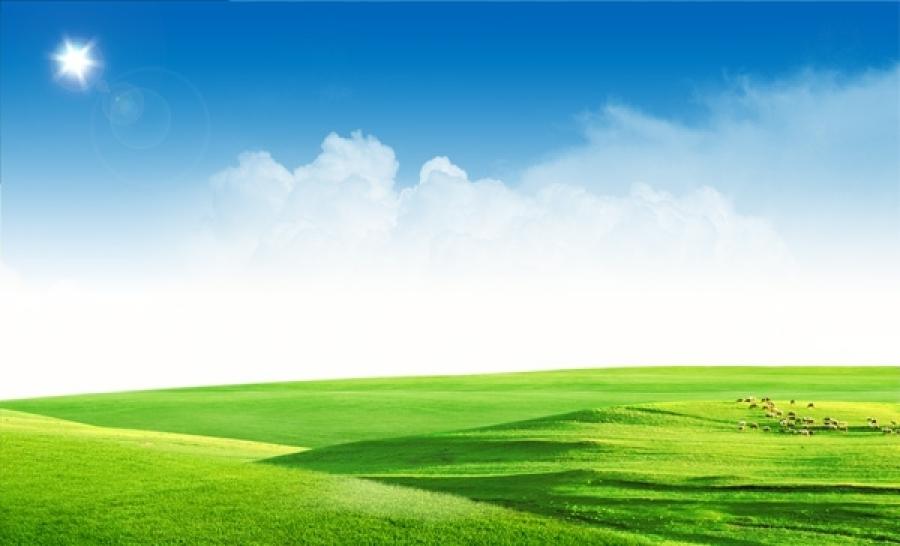 Background mây xanh và đồng cỏ