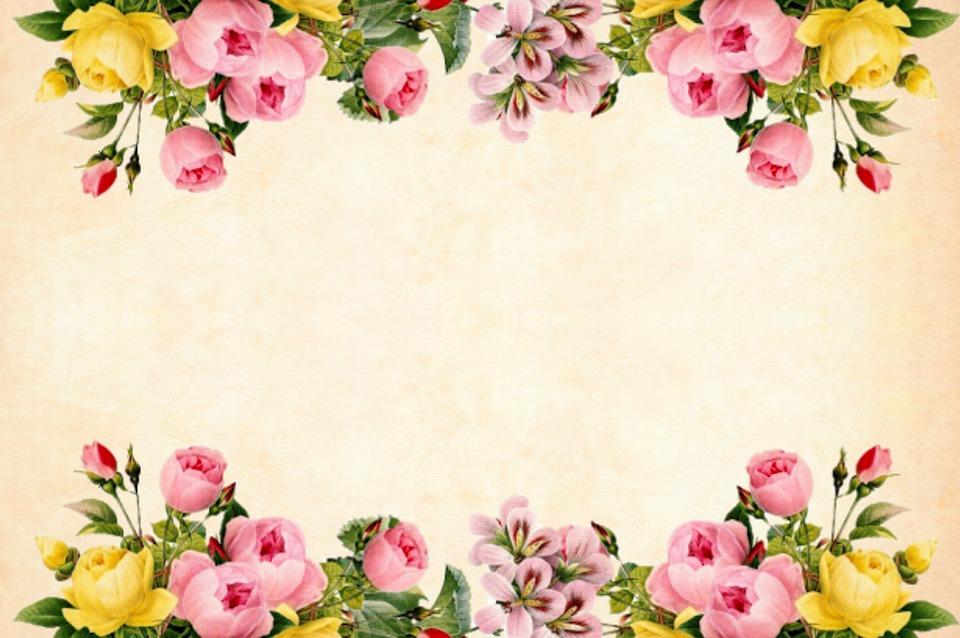 Ảnh background hoa đẹp