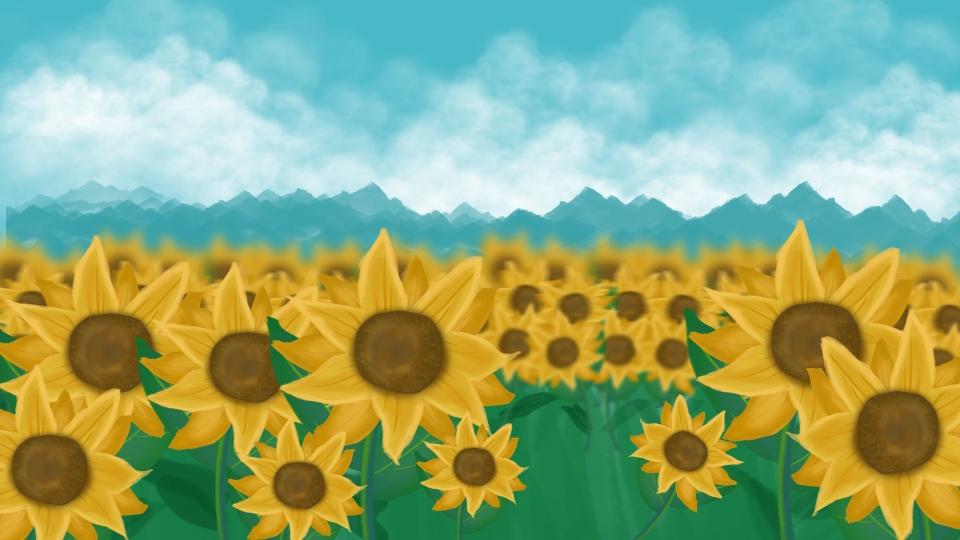 Background cánh đồng hoa