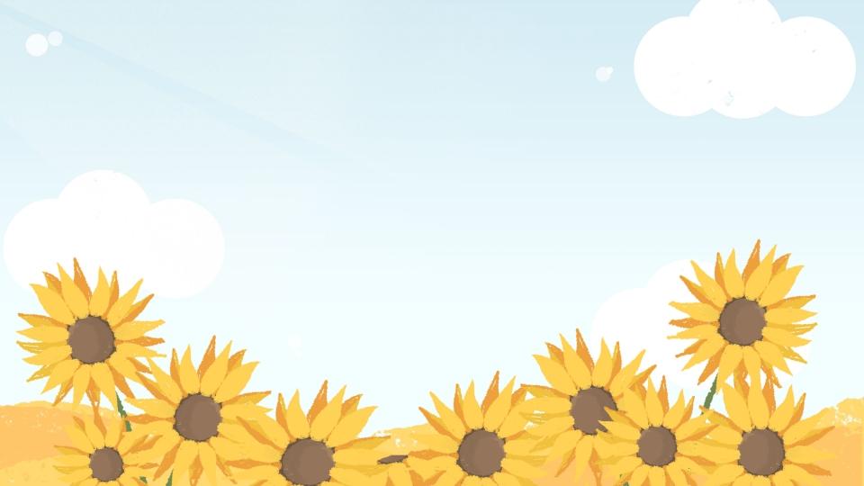 Background hoa hướng dương