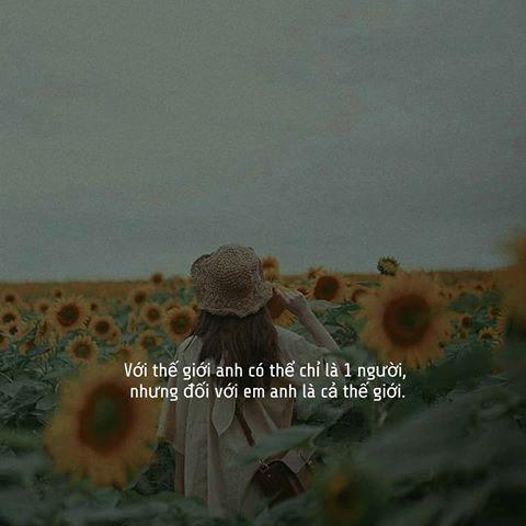 Hình quotes đẹp nhất