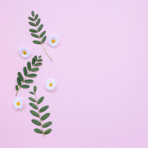 Mẫu background hoa đẹp và đơn giản