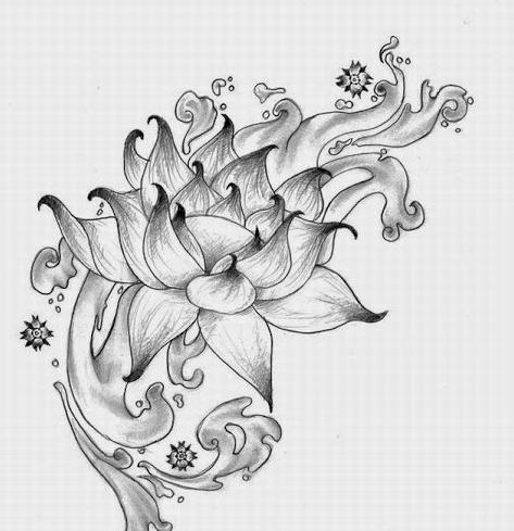 Tranh vẽ chì hoa sen