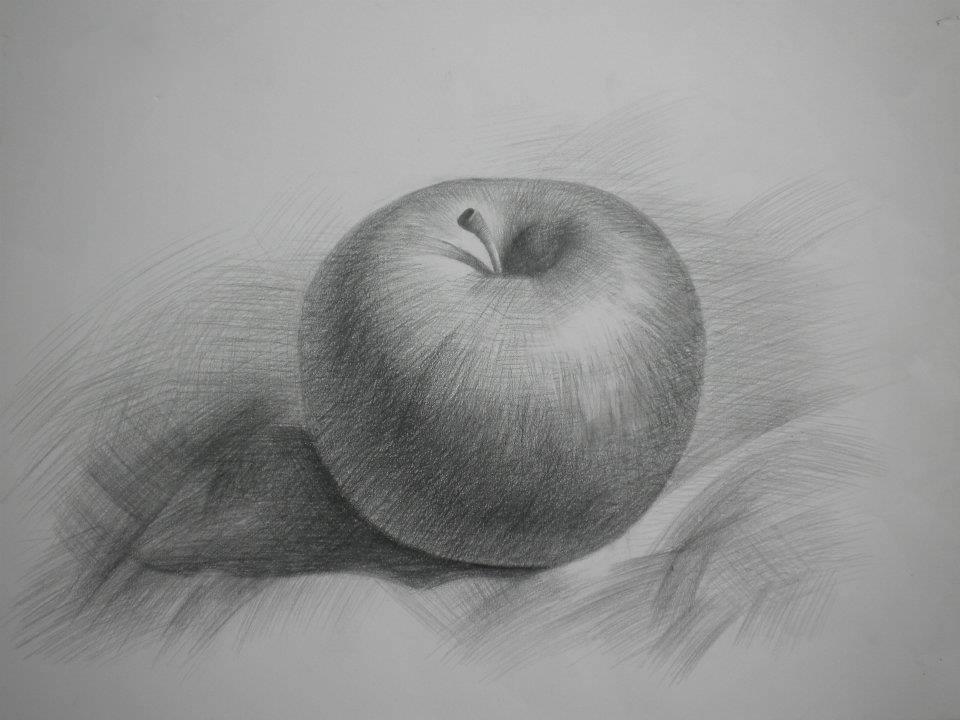 Tranh vẽ chì tĩnh vật