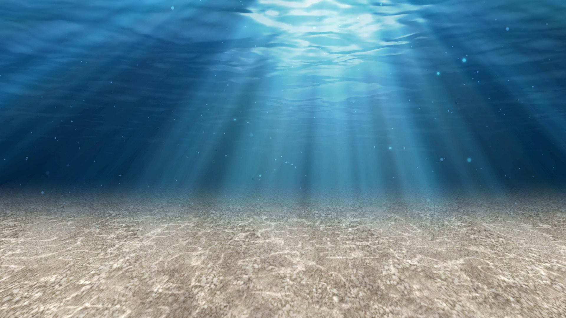 Background phong cảnh đáy biển