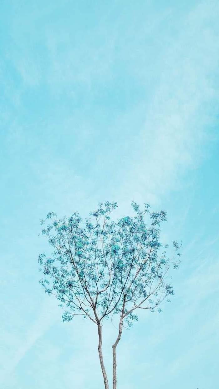 Background xanh bầu trời đẹp