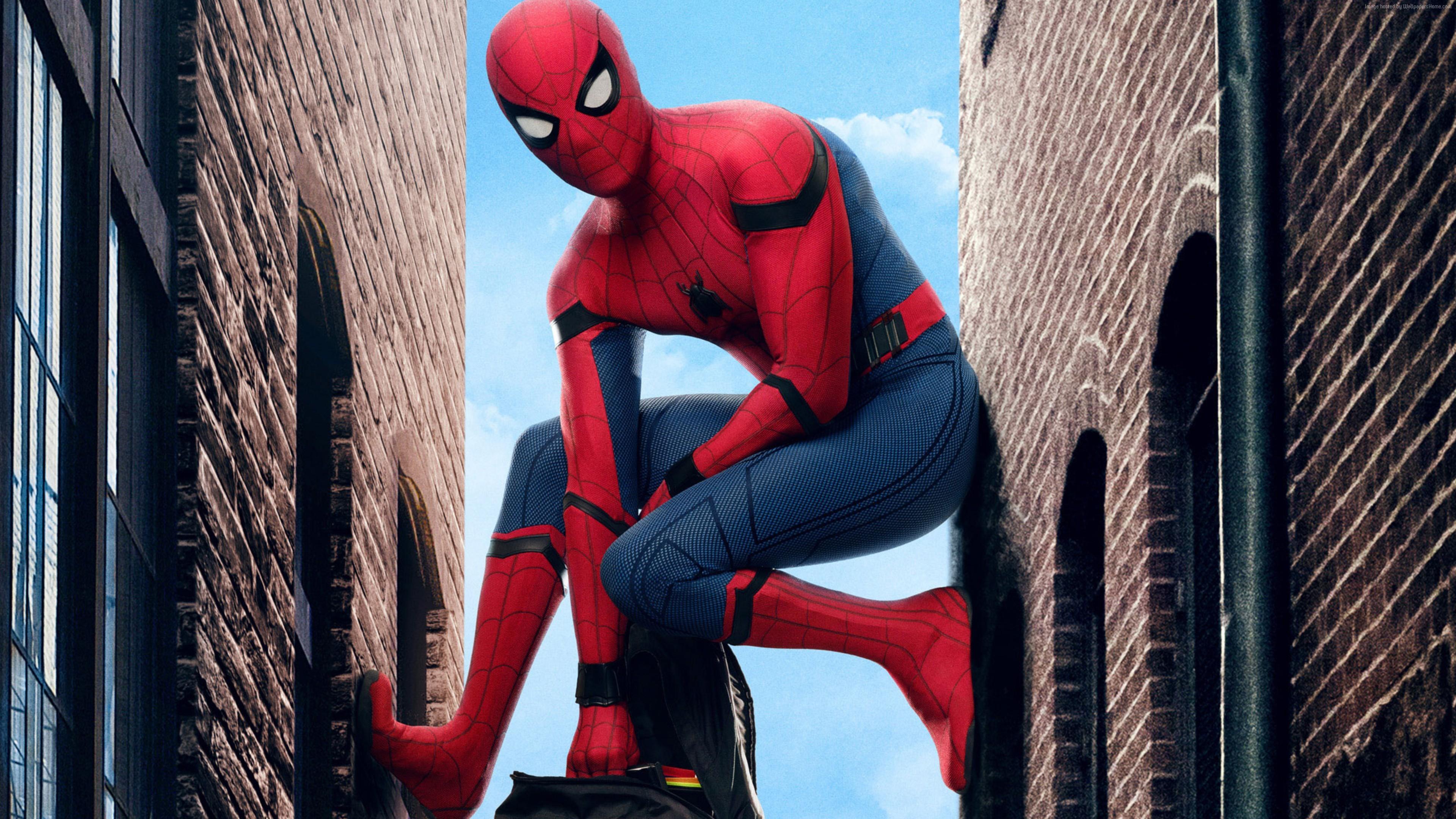 Ảnh Spider Man dễ thương