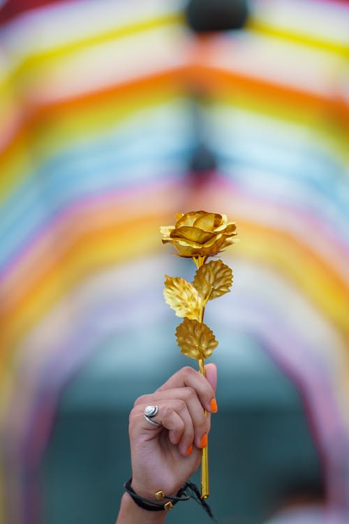 Background hoa sang trọng